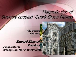 Magnetic side of  Strongly coupled  Quark-Gluon Plasma