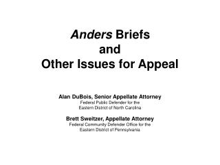 Anders  Briefs and  Other Issues for Appeal