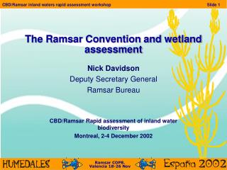 The Ramsar Convention and wetland assessment