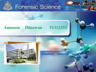 Anusorn Ditsawan 51312333