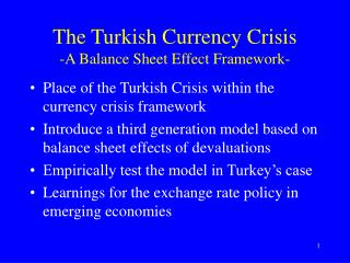 The Turkish Currency Crisis -A Balance Sheet Effect Framework-