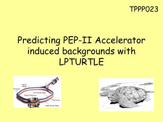 Predicting PEP-II Accelerator induced backgrounds with LPTURTLE