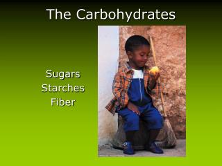 The Carbohydrates