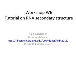 Workshop W6 Tutorial on RNA secondary structure