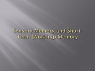 Sensory Memory and Short-Term (Working) Memory
