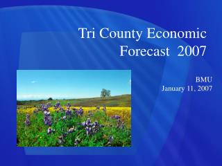 Tri County Economic Forecast  2007