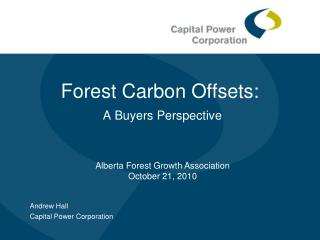 Forest Carbon Offsets: A Buyers Perspective