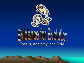 Fossils, Anatomy, and DNA
