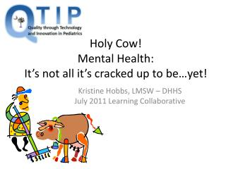 Holy Cow!  Mental Health:  It's not all it's cracked up to be…yet!