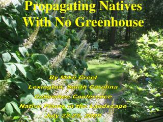 Propagating Natives With No Greenhouse