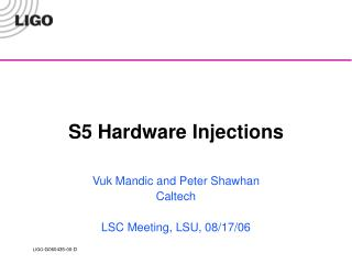S5 Hardware Injections