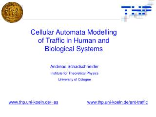 Cellular Automata Modelling of Traffic in Human and Biological Systems