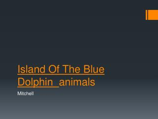 Island Of The Blue Dolphin   animals