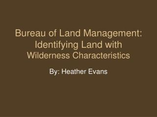 Bureau of Land Management: Identifying Land with  Wilderness Characteristics