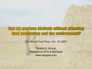 Can we produce biofuels without affecting food production and the environment?