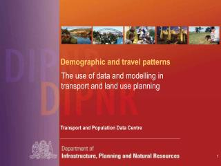 Demographic and travel patterns