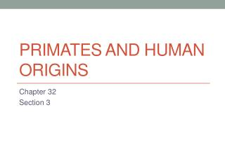 Primates and Human Origins