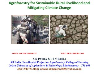 Agroforestry for Sustainable Rural Livelihood and Mitigating Climate Change