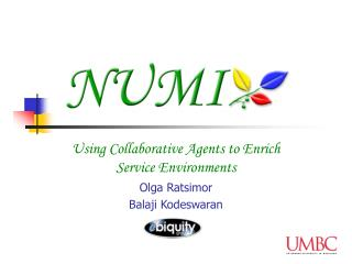 Using Collaborative Agents to Enrich Service Environments Olga Ratsimor Balaji Kodeswaran