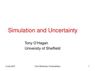 Simulation and Uncertainty