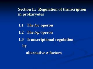 L1   The  lac  operon L2   The  trp  operon L3   Transcriptional regulation by