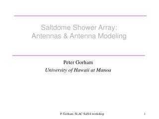 Saltdome Shower Array:  Antennas & Antenna Modeling