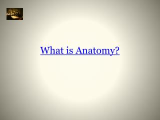 What is Anatomy?