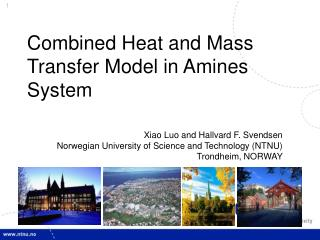 Combined Heat and Mass Transfer Model in Amines System