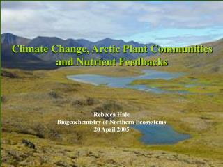 Climate Change, Arctic Plant Communities  and Nutrient Feedbacks
