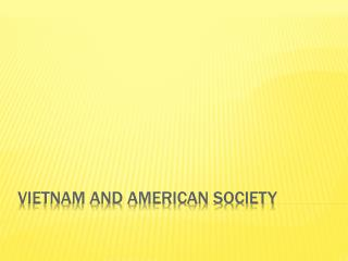 Vietnam and American Society