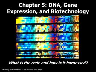 Chapter 5: DNA, Gene Expression, and Biotechnology
