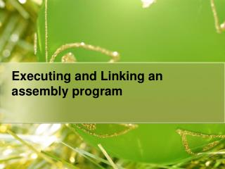 Executing and Linking an assembly program