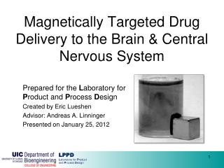 Magnetically Targeted Drug Delivery to the Brain & Central Nervous System
