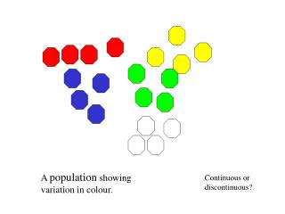 A  population  showing variation in colour.