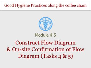 Construct Flow Diagram & On-site Confirmation of Flow Diagram (Tasks 4 & 5)