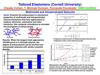 Tailored Elastomers (Cornell University) Claude Cohen, T. Michael Duncan, Fernando Escobedo   DMR-0349952