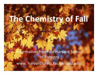 The Chemistry of Fall