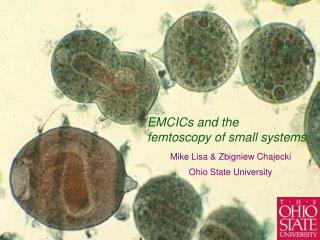 EMCICs and the  femtoscopy of small systems