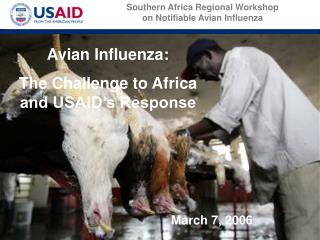Avian Influenza:  The Challenge to Africa and USAID's Response