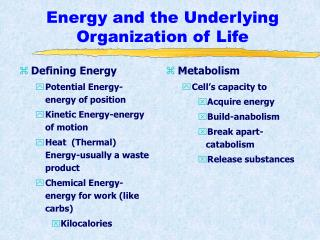 Energy and the Underlying Organization of Life