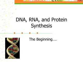 DNA, RNA, and Protein Synthesis