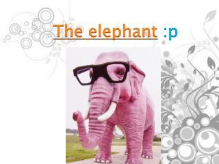 The elephant :p