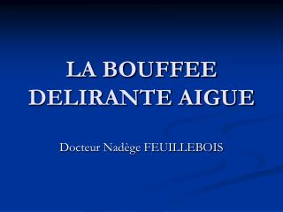 LA BOUFFEE DELIRANTE AIGUE