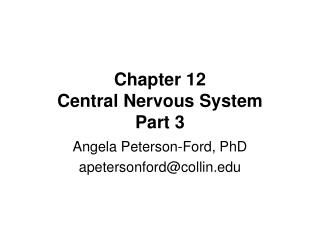 Chapter 12 Central Nervous System Part 3