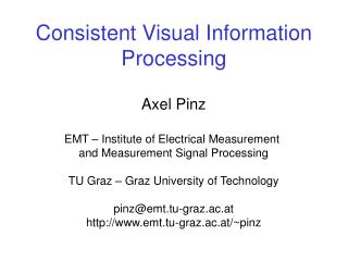 Consistent Visual Information Processing