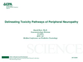 Delineating Toxicity Pathways of Peripheral Neuropathy