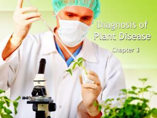 Diagnosis of Plant Disease