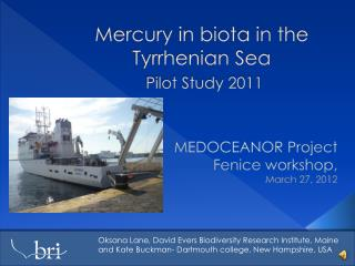 Mercury in biota in the Tyrrhenian Sea Pilot Study 2011