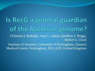 Is RecG  a general  guardian  of  the bacterial genome ?