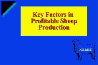 Key Factors in  Profitable Sheep Production